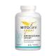 Aminosauren sport MITOcare suplement